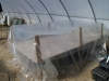 adapted table to cold frame